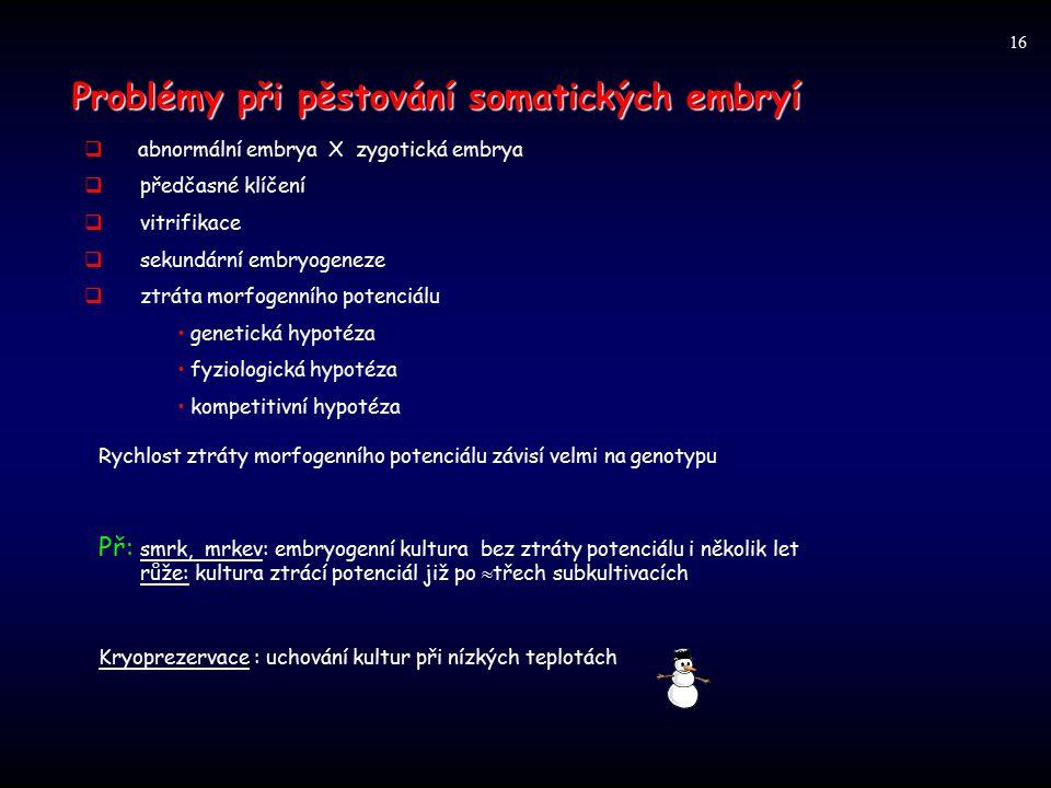 Problémy při pěstování somatických embryí