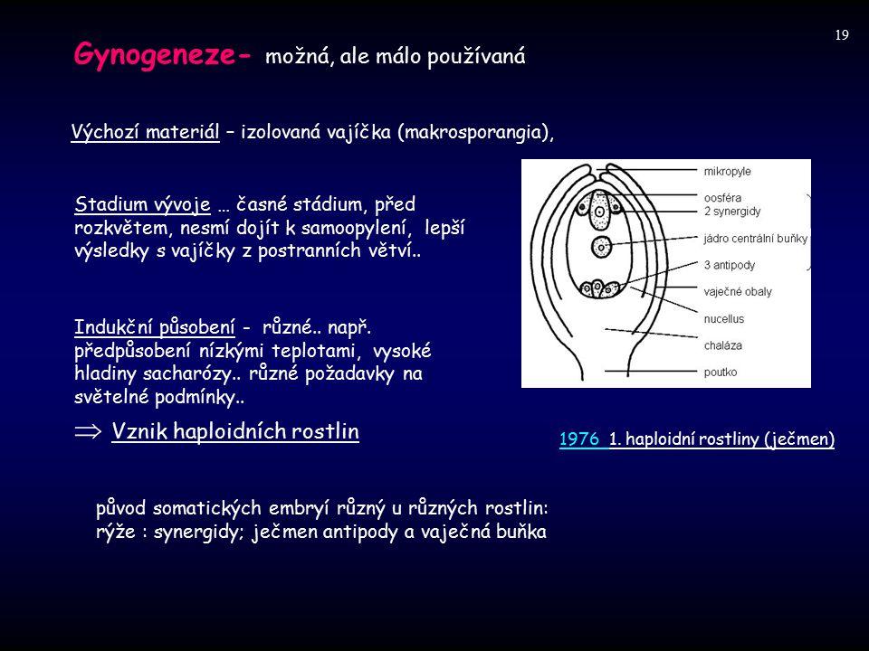 Gynogeneze- možná, ale málo používaná
