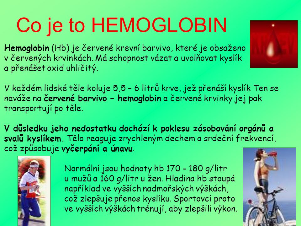 Co je to HEMOGLOBIN