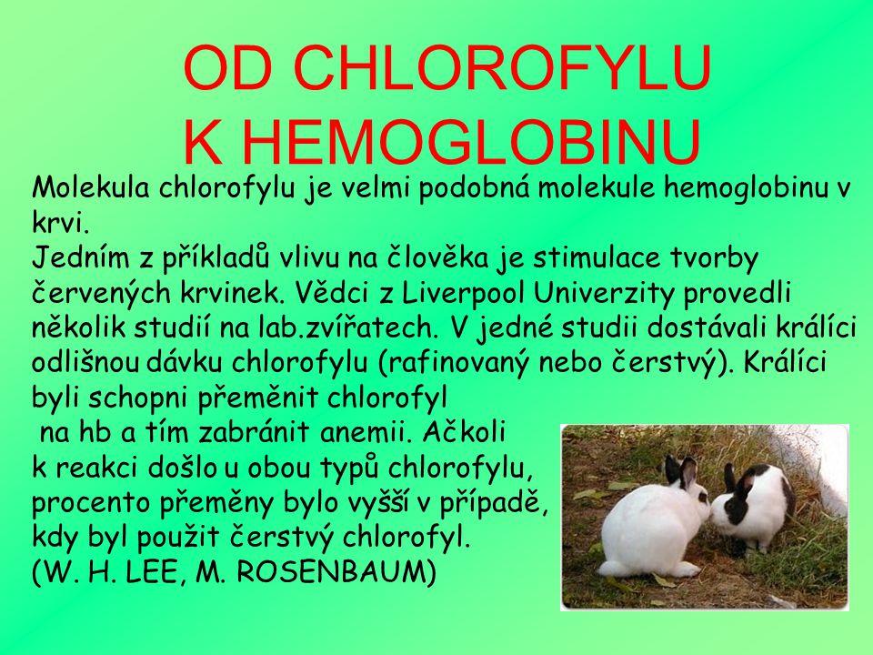 OD CHLOROFYLU K HEMOGLOBINU