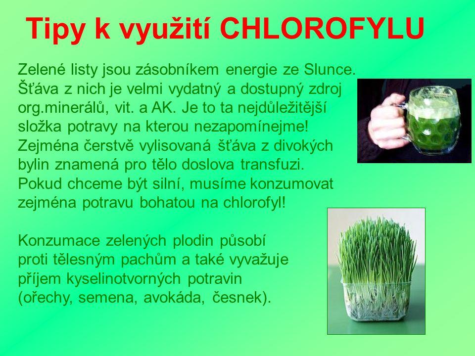 Tipy k využití CHLOROFYLU