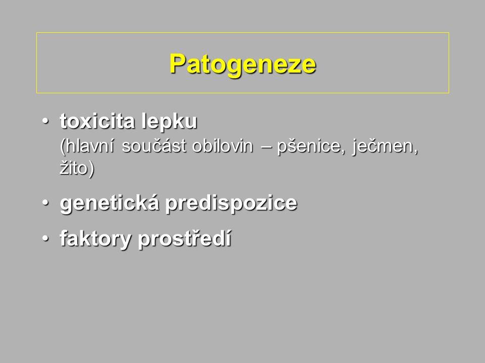 Patogeneze toxicita lepku (hlavní součást obilovin – pšenice, ječmen, žito) genetická predispozice.