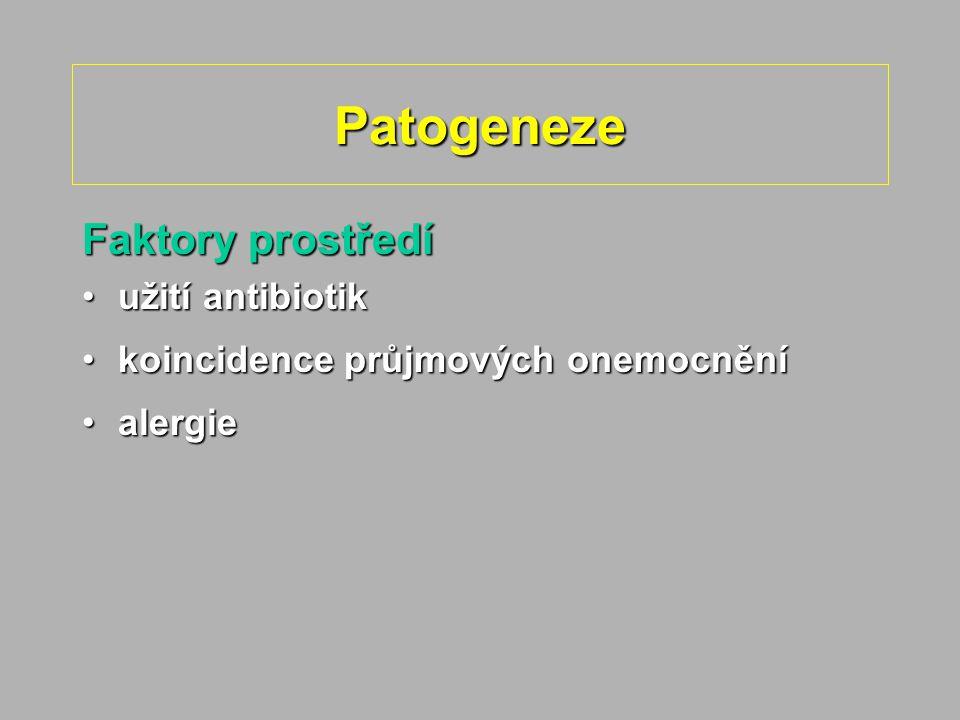 Patogeneze Faktory prostředí užití antibiotik