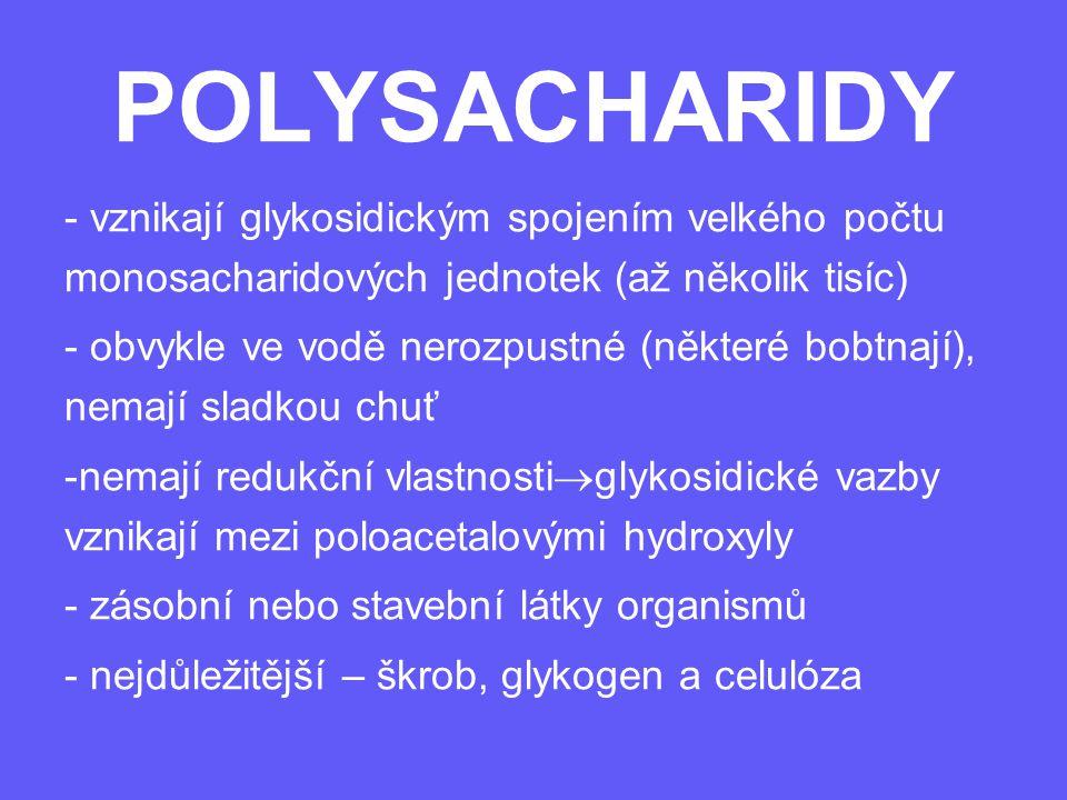 POLYSACHARIDY vznikají glykosidickým spojením velkého počtu monosacharidových jednotek (až několik tisíc)