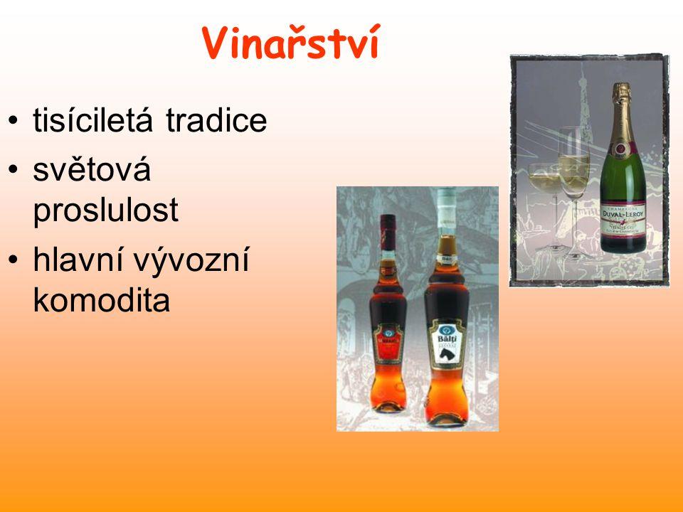 Vinařství tisíciletá tradice světová proslulost
