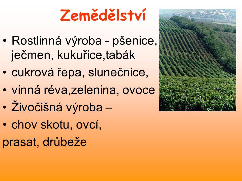 Zemědělství Rostlinná výroba - pšenice, ječmen, kukuřice,tabák