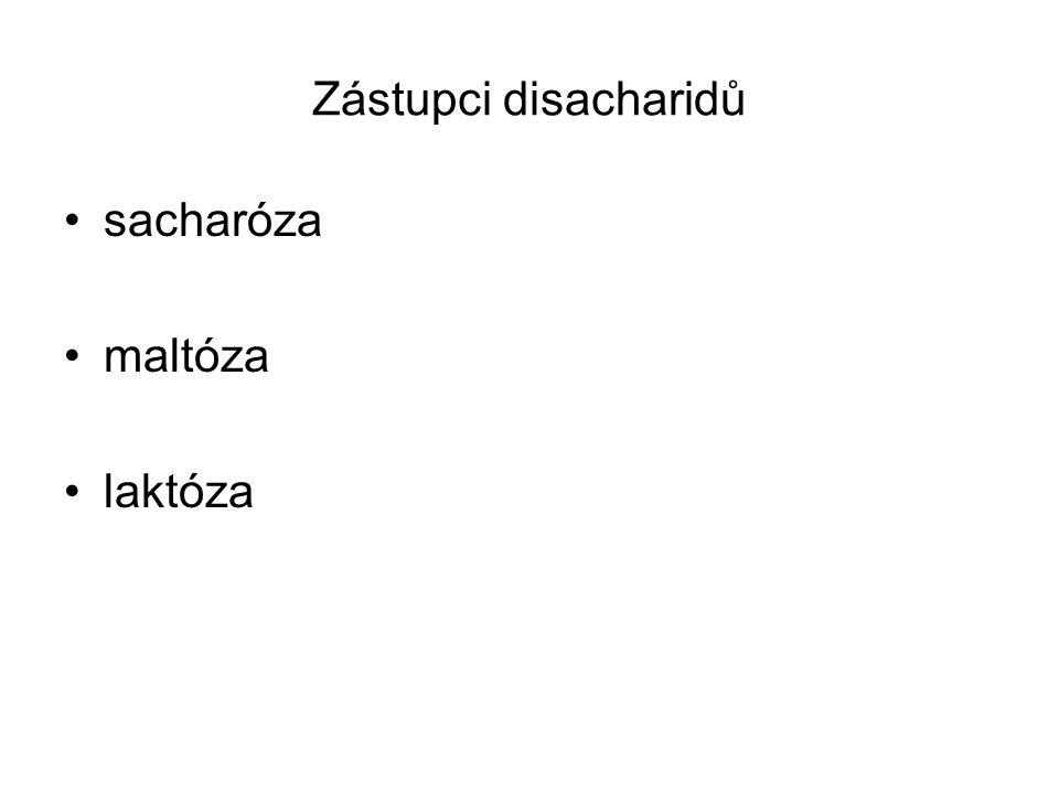 Zástupci disacharidů sacharóza maltóza laktóza