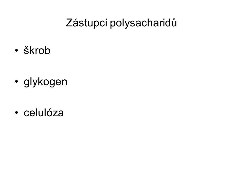 Zástupci polysacharidů