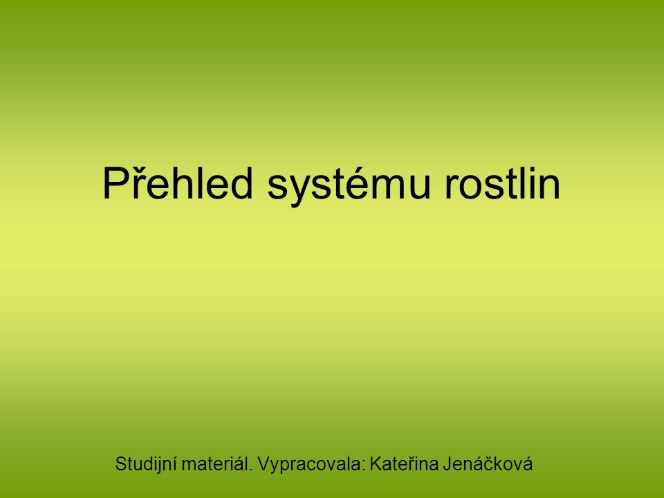 Přehled systému rostlin