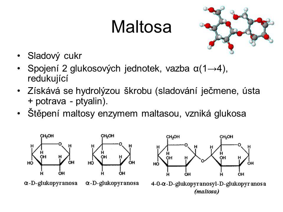 Maltosa Sladový cukr. Spojení 2 glukosových jednotek, vazba α(1→4), redukující.