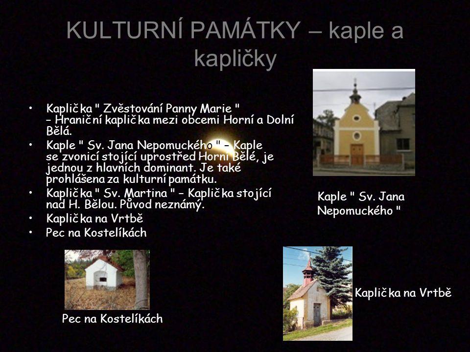 KULTURNÍ PAMÁTKY – kaple a kapličky