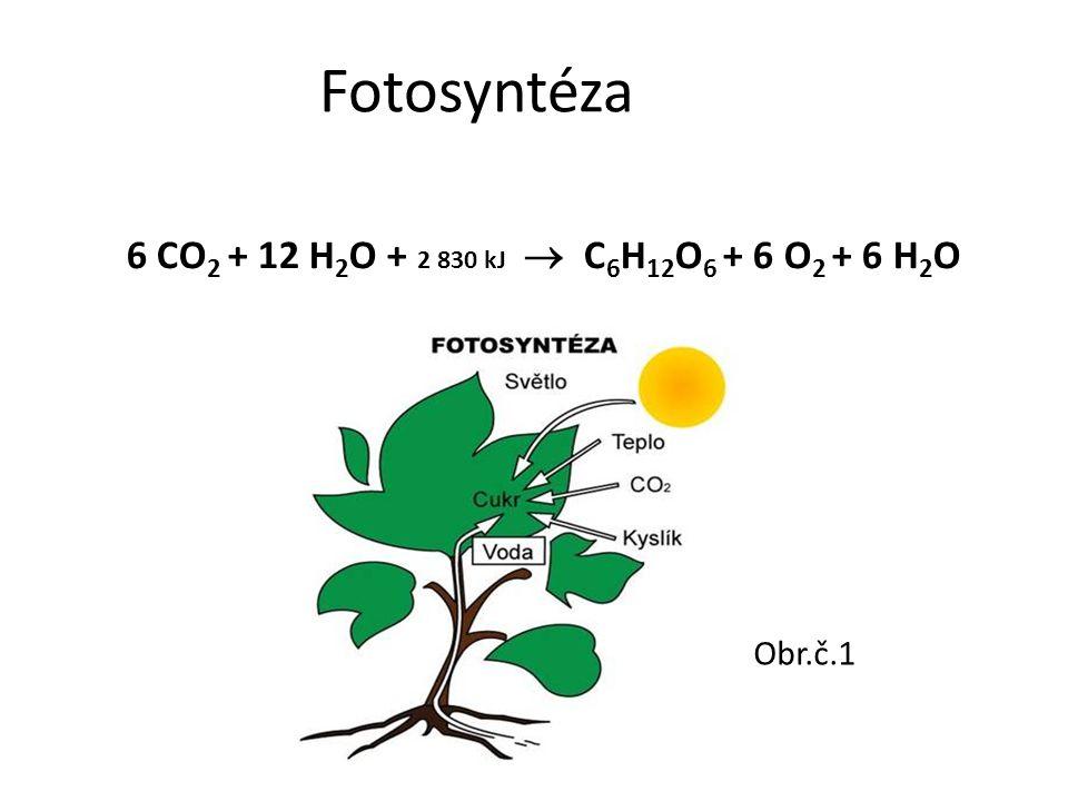 Fotosyntéza 6 CO2 + 12 H2O + 2 830 kJ  C6H12O6 + 6 O2 + 6 H2O Obr.č.1