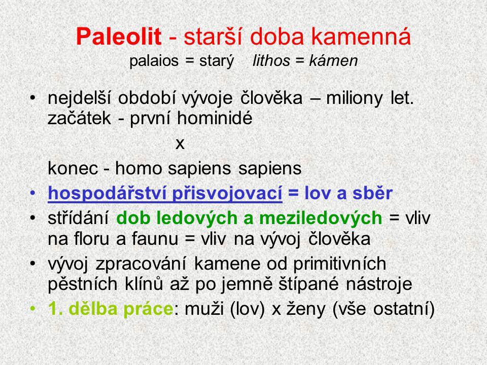 Paleolit - starší doba kamenná palaios = starý lithos = kámen