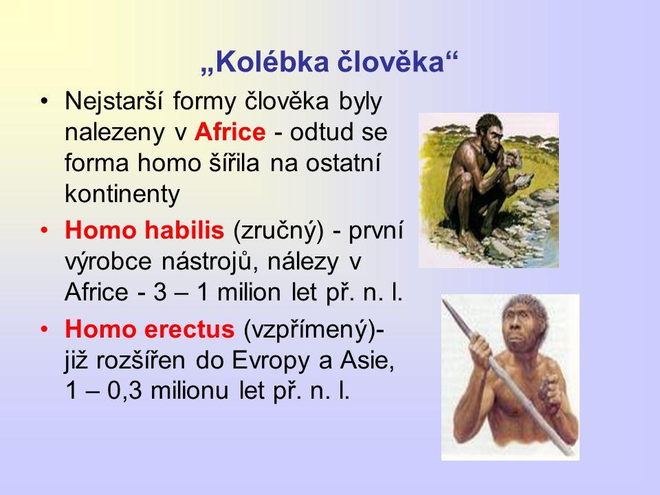 """""""Kolébka člověka Nejstarší formy člověka byly nalezeny v Africe - odtud se forma homo šířila na ostatní kontinenty."""
