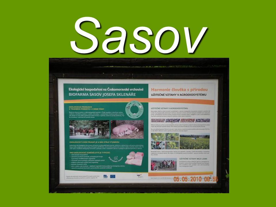 Sasov