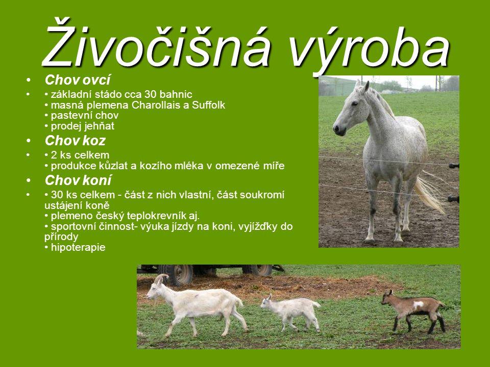 Živočišná výroba Chov ovcí Chov koz Chov koní