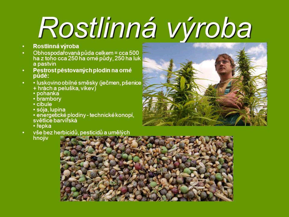 Rostlinná výroba Rostlinná výroba