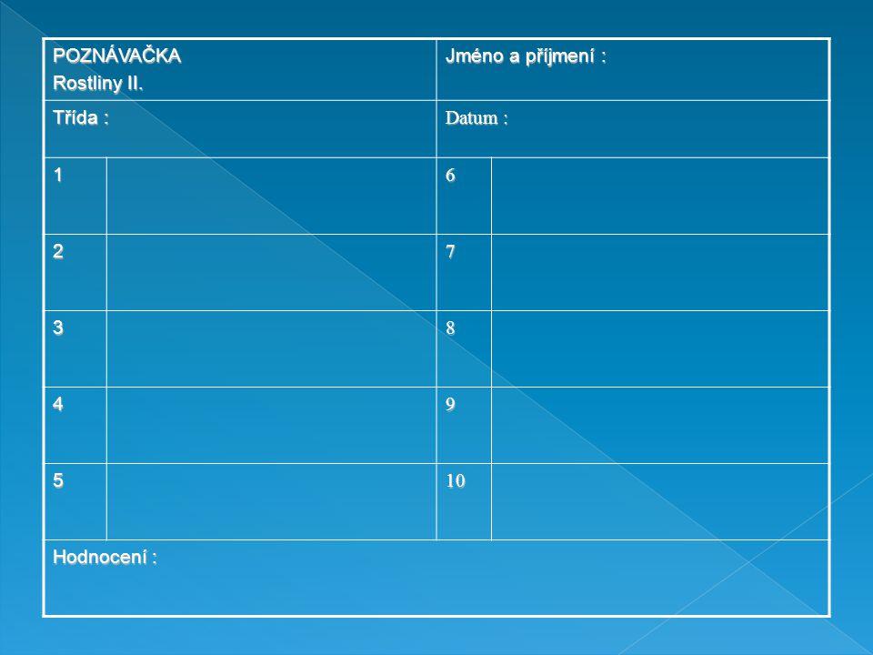 POZNÁVAČKA Rostliny II. Jméno a příjmení : Třída : Datum : 1 6 2 7 3 8 4 9 5 10 Hodnocení :