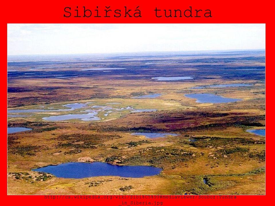 Sibiřská tundra http://cs.wikipedia.org/wiki/Sibi%C5%99#mediaviewer/Soubor:Tundra_in_Siberia.jpg