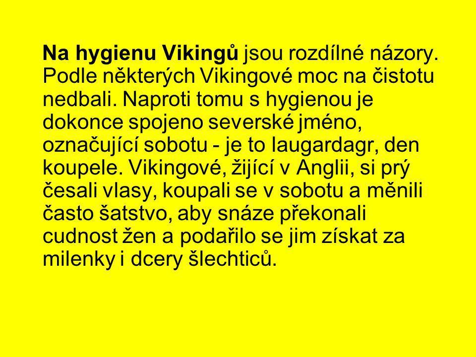 Na hygienu Vikingů jsou rozdílné názory