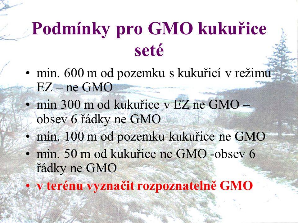Podmínky pro GMO kukuřice seté