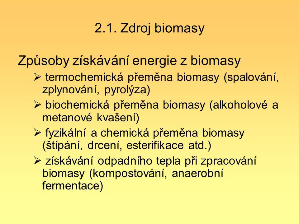 Způsoby získávání energie z biomasy