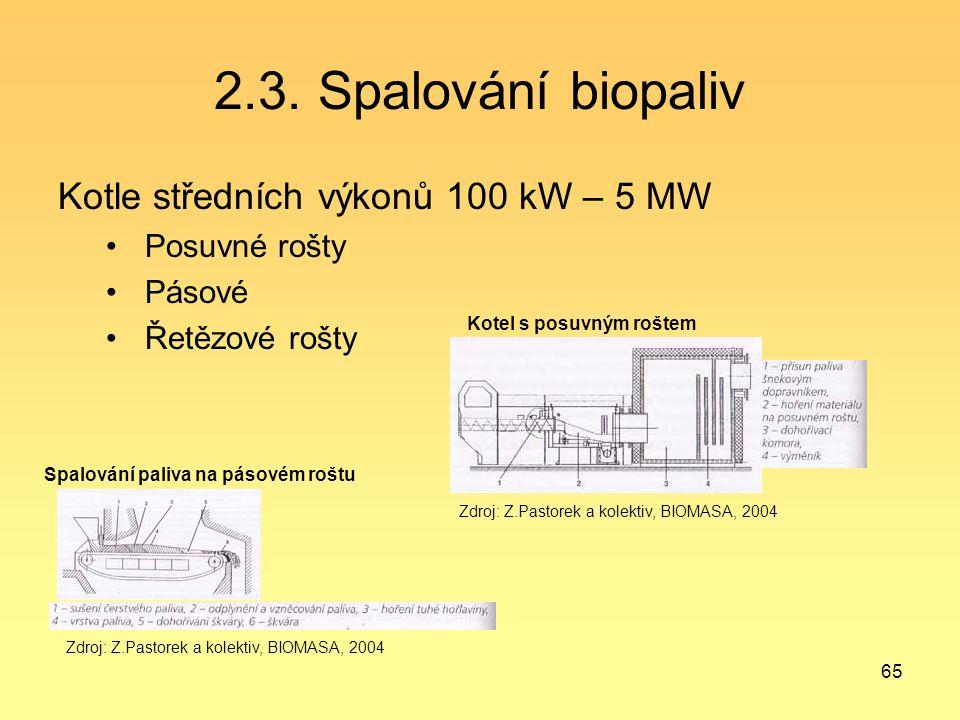 2.3. Spalování biopaliv Kotle středních výkonů 100 kW – 5 MW