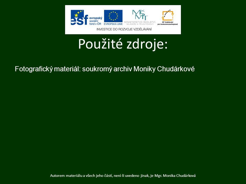Použité zdroje: Fotografický materiál: soukromý archiv Moniky Chudárkové.
