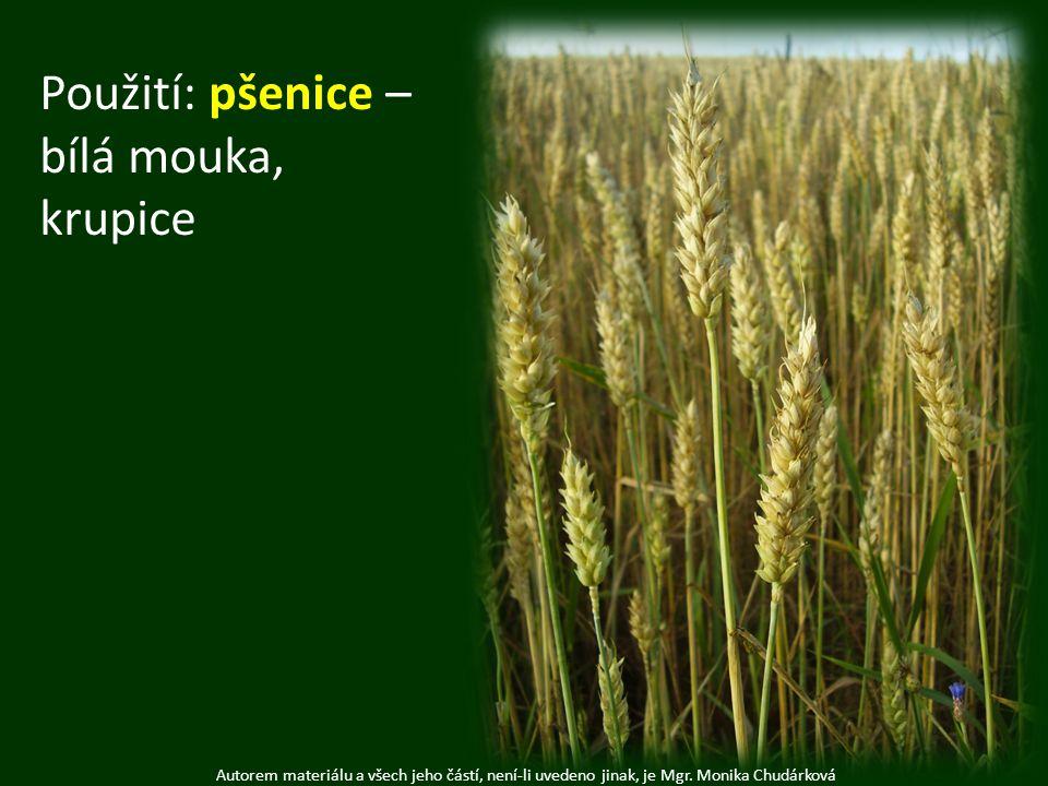 Použití: pšenice – bílá mouka, krupice