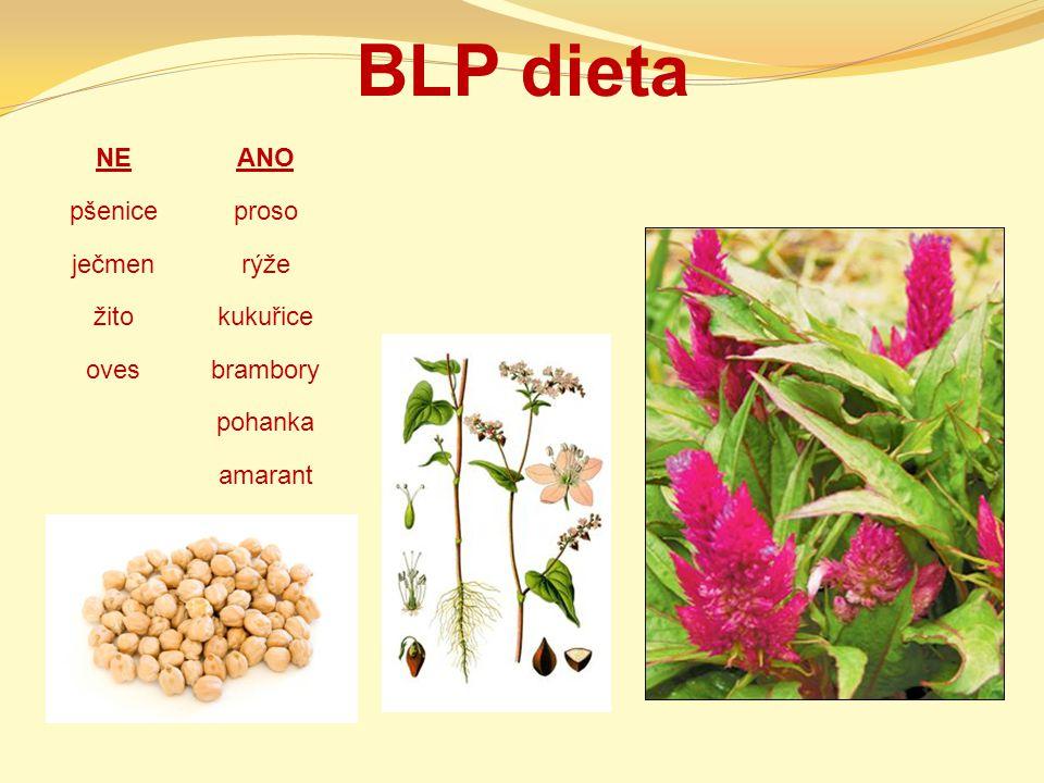 BLP dieta NE ANO pšenice proso ječmen rýže žito kukuřice oves brambory