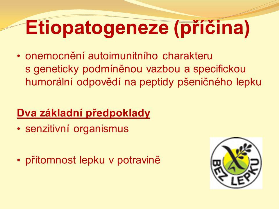 Etiopatogeneze (příčina)