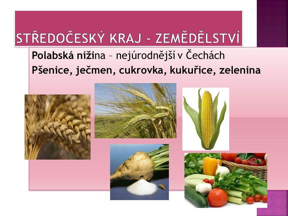 Středočeský kraj - zemědělství