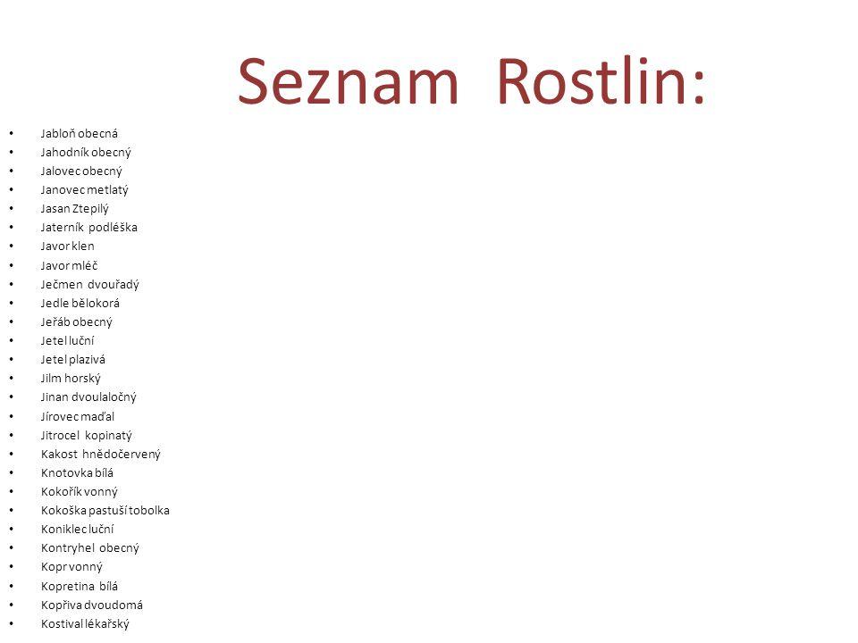 Seznam Rostlin: Jabloň obecná Jahodník obecný Jalovec obecný