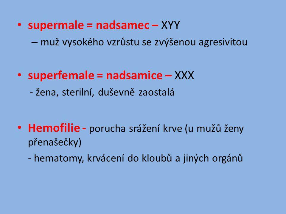 supermale = nadsamec – XYY