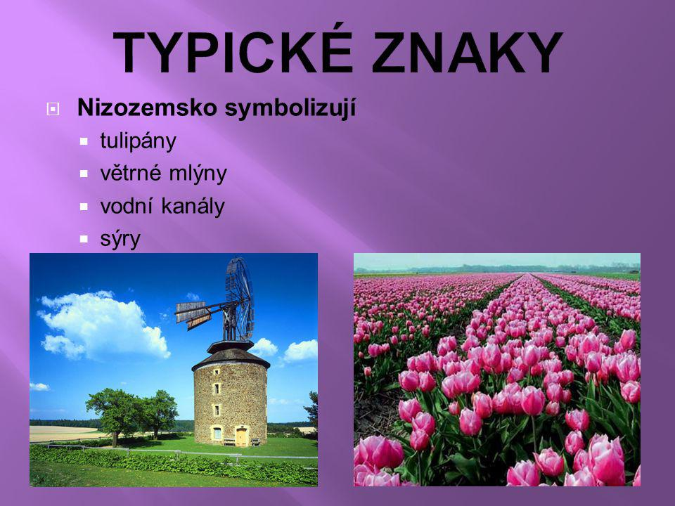 TYPICKÉ ZNAKY Nizozemsko symbolizují tulipány větrné mlýny