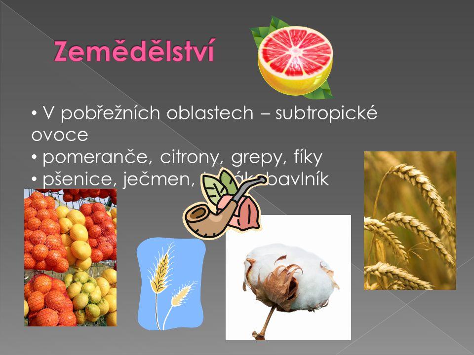 Zemědělství V pobřežních oblastech – subtropické ovoce