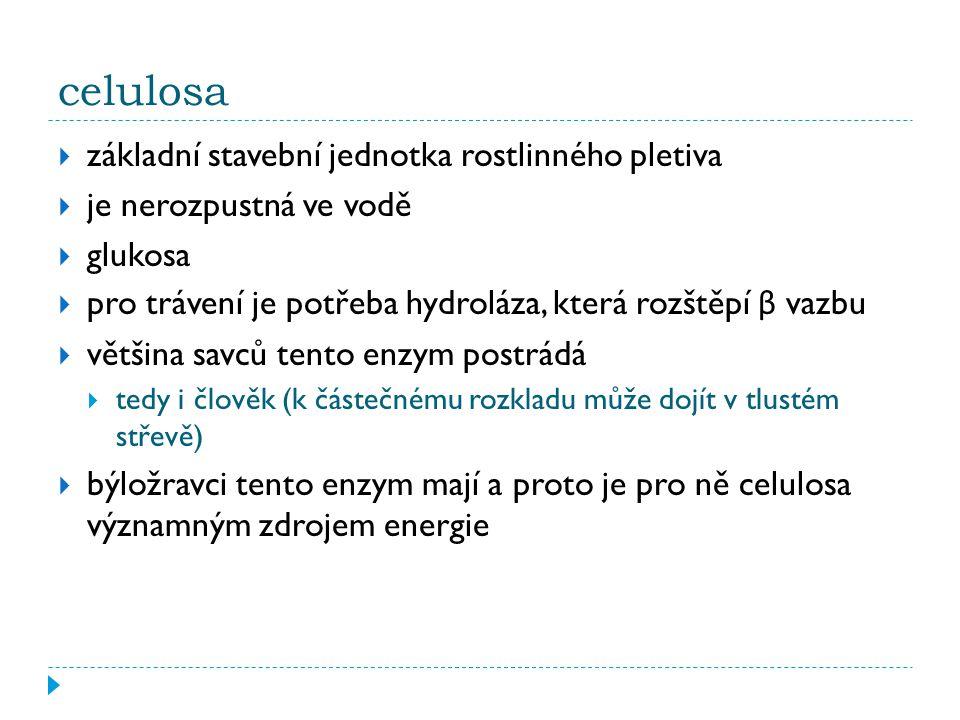 celulosa základní stavební jednotka rostlinného pletiva