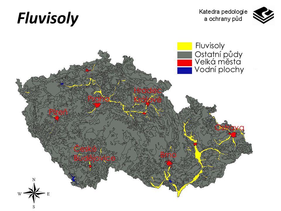 Fluvisoly