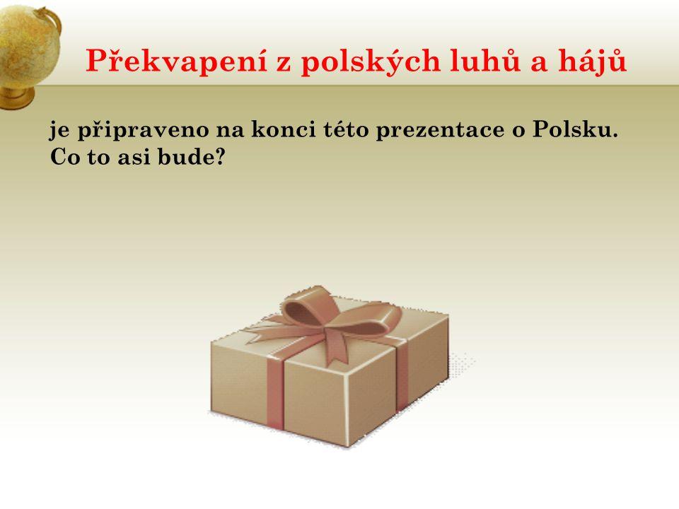Překvapení z polských luhů a hájů