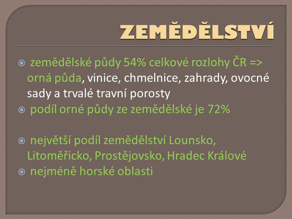 ZEMĚDĚLSTVÍ zemědělské půdy 54% celkové rozlohy ČR => orná půda, vinice, chmelnice, zahrady, ovocné sady a trvalé travní porosty.