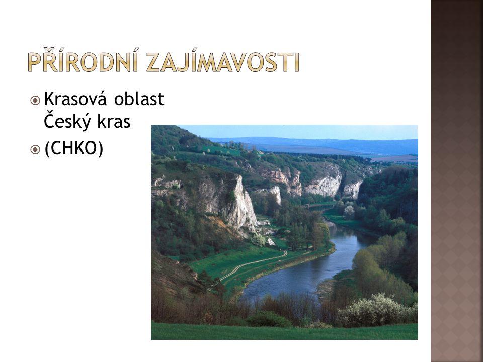 Přírodní zajímavosti Krasová oblast Český kras (CHKO)