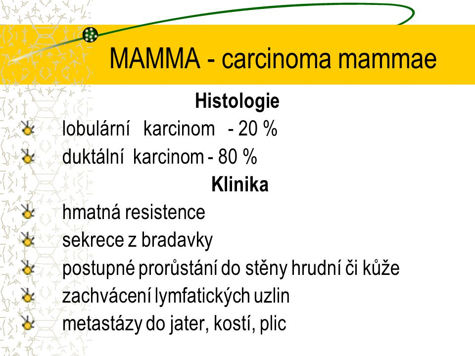 MAMMA - carcinoma mammae