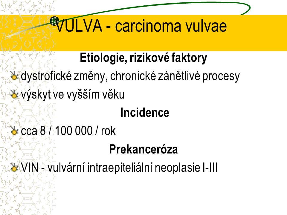 VULVA - carcinoma vulvae