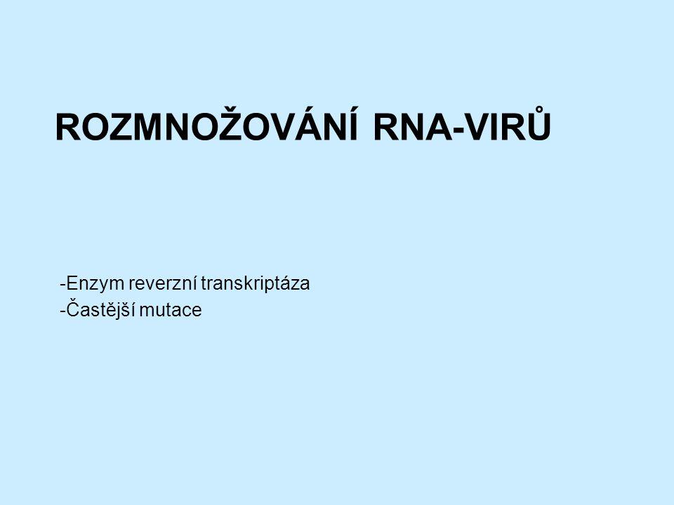 Rozmnožování RNA-virů