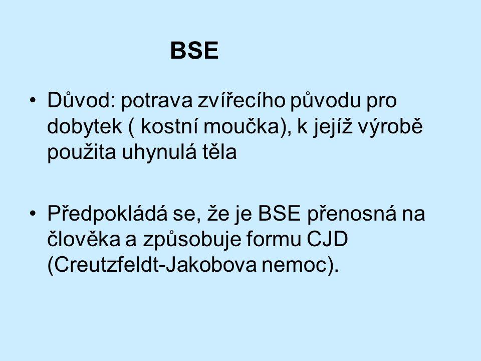 BSE Důvod: potrava zvířecího původu pro dobytek ( kostní moučka), k jejíž výrobě použita uhynulá těla.