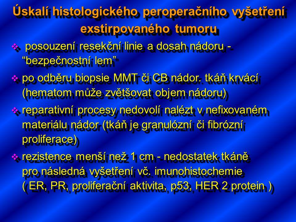 Úskalí histologického peroperačního vyšetření exstirpovaného tumoru
