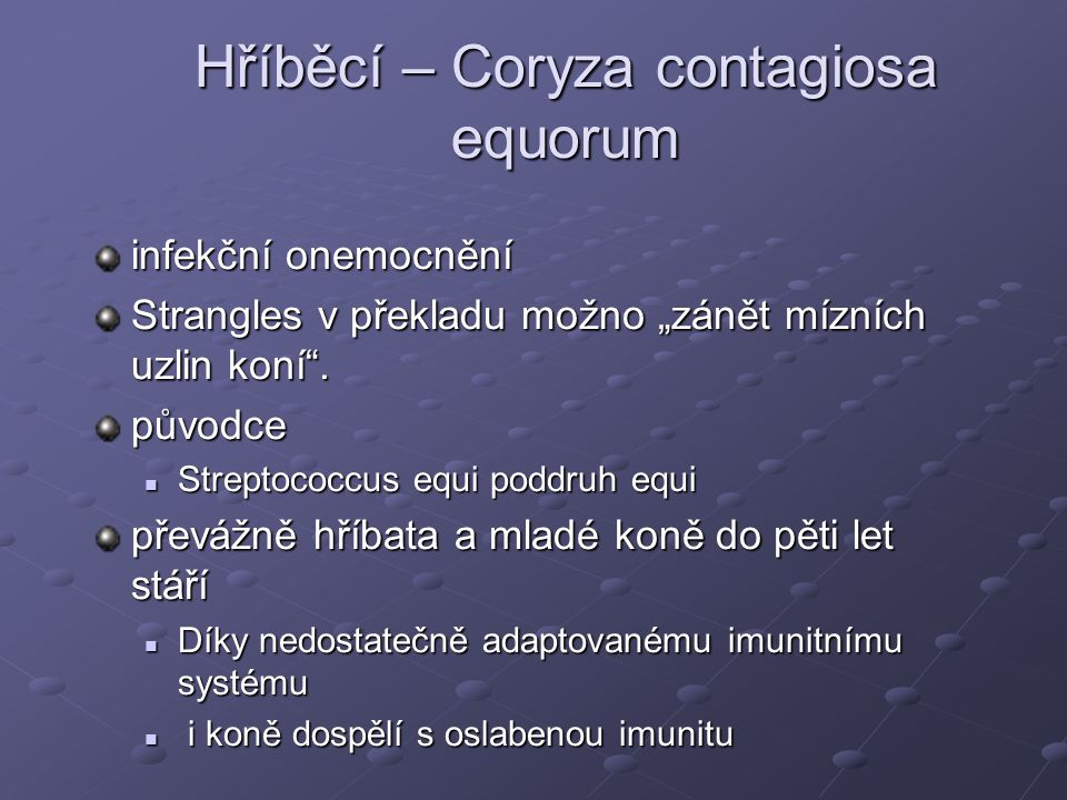 Hříběcí – Coryza contagiosa equorum