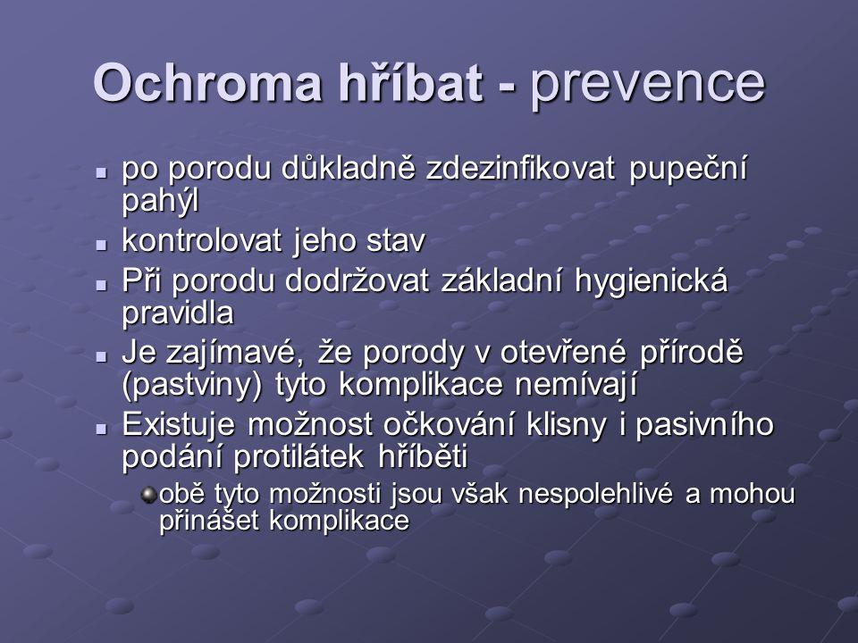 Ochroma hříbat - prevence