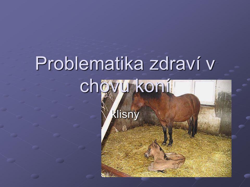 Problematika zdraví v chovu koní