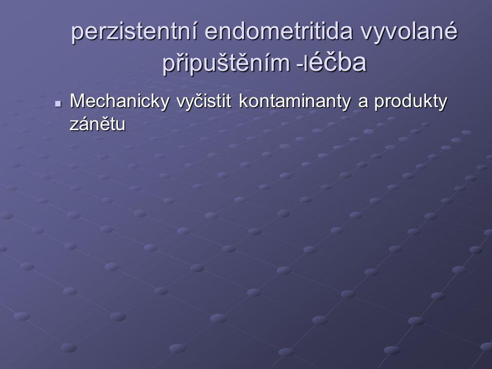 perzistentní endometritida vyvolané připuštěním -léčba